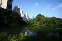 IMG_1061 (Cristian Marchi) Tags: day7 ny nyc america viaggio trip central centralpark park usa skyscrapers skyline