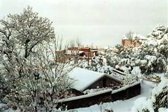 Serenity (zaherbenazoug) Tags: microclimat atmosphre mountain blurred harmony snowscene landscape cityscape winterscene weather outdoor