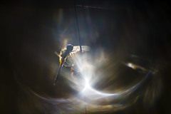 Zwarte heidelibel (Sympetrum danae ) (look to see) Tags: zwarteheidelibel sympetrumdanae libel dragonfly experiment leitzcolorplan90mmf25 vintage lens flare bokeh light licht