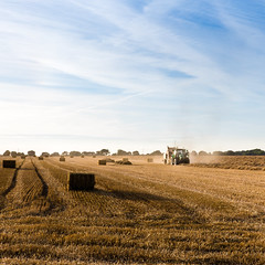 Harvest time (Zeeyolq Photography) Tags: agriculture cereals food harvest nature tractor wheat hermanvillesurmer normandie france