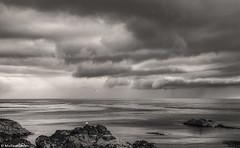 Rain clouds over St Abbs; Berwickshire, Scotland (Michael Leek Photography) Tags: rain clouds weather blackandwhite landscape scotland scottishlandscapes scottishcoastline scotlandslandscapes michaelleek michaelleekphotography thisisscotland northsea borders berwickshire sea tide rocks awesomescotland coast coastline stabbs britishlandscapes