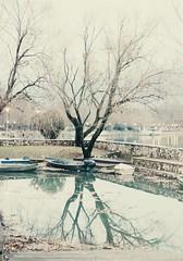* (PattyK.) Tags: ioannina giannena giannina mycity whereilive lovelycity lakeside lakefront lakepamvotida ioanninalake reflections winter white january 2014 epirus ilovephotography pamvotida       greece grece grecia griechenland