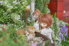 (Tzuying27) Tags: bluefairy andy bjd