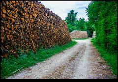 160713-9657-XM1.jpg (hopeless128) Tags: 2016 france logs eurotrip bioussac aquitainelimousinpoitoucharen aquitainelimousinpoitoucharentes fr