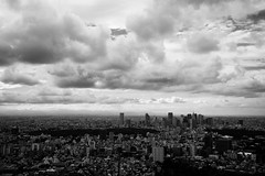 Views of Tokyo #2 (Woodenship) Tags: skydeck roppongi hills roppongihills tokyo japan carl zeiss carlzeiss biogont 235 f2 35mm zm sony a7 ilce7m2 7 monochrome blackandwhite bw black white skyline outdoor city architecture