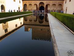 (Painter Snake) Tags: granada andaluca spain alhambra palace beautiful beauty nazares muslim art water park construction building reflecting august 2016 paintersnake apsphotographs summer visitors tourists wanderlust