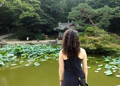 Seoul 2016 (mauxditty) Tags: seoul korea southkorea lunnanniversasia asia changdeokgung palace secretgarden lotus waterlily pagoda