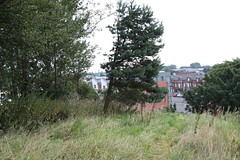 Belfast FBM (iainrmacaulay) Tags: ordnance survey belfast fundamental bench mark