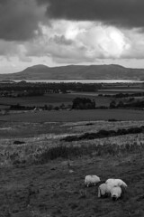 Over Loch Leven (RagbagPhotography) Tags: west lomond bishop bishops hill loch leven fife perth kinross scotland black white mono monochrome