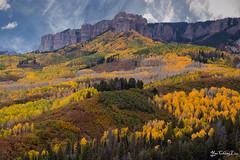 Cimarron ridge, Owl Creek Pass, Colorado (FollowingNature) Tags: cimarronridge owlcreekpass colorado coloradofallcolors followingnature aspen ridgeway cr8 coloradoroute8