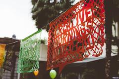 CMweird with Ana Pao Aviles (creativemorningsmexicocity) Tags: creativemornings creatividad creativemorningsmexicocity creativecommunity comunidad conferencia mexicocity mexico evento universidad circo raro weird disfraz desayuno gratis