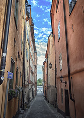 Sweden, Stockholm - Narrow street 2 (Akustiksamuray) Tags: isve sweden stockholm animal puppy realistic street north europe life road sidewalk