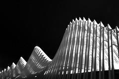 white wave (Karl-Heinz Bitter) Tags: calatrava bahnhof trainstation bw architektur architecture abstract abstrakt italien italy shadows white weiss schwarz black khbitter karlheinzbitter
