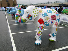 All As One by Emma Jackson, Herd of Sheffield Farewell Weekend 2016 (Dave_Johnson) Tags: allasone emmajackson herdofsheffield herd elephant elephants art streetart sculpture sheffchildrens sheffieldchildrenshospitalcharity sheffieldchildrenshospital childrenshospitalcharity childrenshospital sheffield southyorkshire meadowhall carpark shoppingcentre