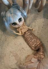 Streuner (Dolly Aves) Tags: blythe blythedoll middie kitty streuner