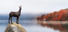 Lake Bohinj, Slovenia (Dejan Hudoletnjak) Tags: lake lakebohinj bohinj slovenia slovenja autumn fall colorful fog reflections statue natural symbol serene peace capricorn morning