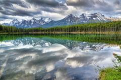 Herbert Lake 4172 (L. Bradfish) Tags: copyrightlbradfish herbertlake banffnationalpark alberta canada icefieldsparkway lake mountains