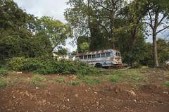 Old bus near downtown (Boyd Shearer) Tags: lexington kentucky unitedstates us