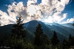 Albert Bierstadt iin Kurt Irma (Wolf Creek for Albert Bierstadt) (SBastan) Tags: tonya trabzon kalnam kurtirma karadeniz da gne orman bulutlar nikond610 tamron2470mmf28divcusd wolfcreek blacksea mountain sun forest clouds