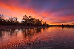 Golden Pond (Jaykhuang) Tags: shadowcliff pleasanton sunset trivalley bayarea eastbay dark reflections burn jayhuangphotography california ebparksok ebparkok
