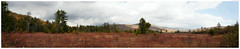 Cranberry Glades Panorama (Geoff Sills) Tags: cranberry glades panorama monongahela national forest west virginia landscape fall autumn mountains beautiful open grass wild nature rule thirds geoffrey william sills geoff nikon d700 35mm 14g pine trees appalachian mountain range