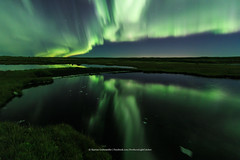 Alone at the pond (Kjartan Gumundur) Tags: iceland sland pond reflection auroraborealis northernlights norurljs nordlys zorzapolarna polarlict ngc nightphotography canoneos5dmarkiv tokinaatx1628mmf28profx kjartangumundur arctic photoguide sky