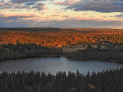 View from the Aulanko look-out tower (KaarinaT) Tags: beautifullight aulanko hmeenlinna finland lake takenfromthelookouttowerofaulanko view nordiclandscape thisisfinland thisismyfinland forest trees fir