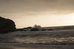 Montara Beach, Ca (melissa.dehoog) Tags: montarabeach california westcoast ocean pacific waves reflective sunset outdoor telephonewires bayarea