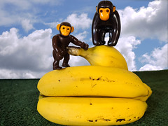 Making a mountain out of........ (Alan FEO2) Tags: bananas bunch mountain monkeys apes toys fruit food yellow indoors 116picturesin2016 90 gobananas panasonic dmc g1 2oef