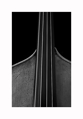 7-contrabass (Roberto Gramignoli) Tags: blackandwite bw contrabbasso contrabass musica music jazz intruments musicinstruments strumentimusicali