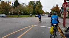[video] so windy the leaves moved yesterday 20161014_173014 (roland) Tags: bicycling vancouver bicyclingfromwork commuting leaves leavesblowing wind windy