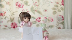 "Who said ""Meow""?! (Full version on YouTube) (AnnaZu) Tags: cats cat dolls bjd stopmotion ante stopmotionanimation pipos   littlefee  pukifee"