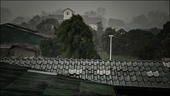 Rain in Fang keeps me in my room (Roger L. Sizemore) Tags: rice monsoon hotspring fang chiangdao doiluang doinang