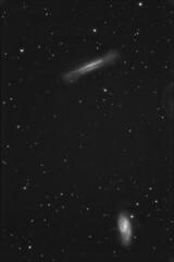 ngc3628-m66lum (Giuseppe Petralia) Tags: Astrometrydotnet:status=solved Astrometrydotnet:version=14400 Astrometrydotnet:id=alpha20130511288457