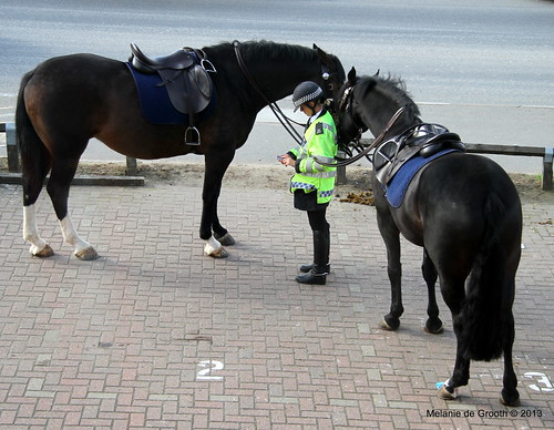 Police Horses and Woman