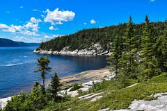 Amazing Nature (Alicia FB) Tags: quebec canada nature arbre vert lac ciel sky paysage landscape