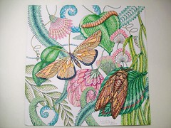 Yellow Buterfly (Lynne M. B.) Tags: coloringadults coloring coloringbook coloredpencils drawing art illustration tropicalworld milliemarotta butterfly pointillism
