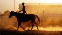 The world breaks everyone, and afterward, some are strong at the broken places.  Hemingway (Clever Poet) Tags: silhouette horse rider equestrian equine riding hunterjumper sunset sunbeams days end dust dusty