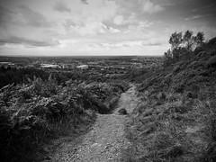 Shaw & Crompton Moor (Missy Jussy) Tags: shaw oldham cromptonmoor moors landscape lancashire england mono monochrome blackwhite bw blackandwhite path fern trees buildings village town canon canonpowershotsx60 sky clouds unitedkingdom