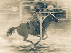 Rodeo (ildikoannable) Tags: project365 olympus lumix mirrorless hourse hourserace rodeo bw mono panning action motion