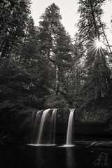 Butte Creek Falls (Joshua Johnston Photography) Tags: buttecreekfalls waterfall oregon pnw pacificnorthwest joshuajohnston canon6d nature blackandwhite bnw sigma20mmf14dghsmart