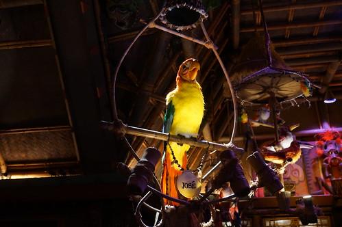 "Walt Disney's Enchanted Tiki Room • <a style=""font-size:0.8em;"" href=""http://www.flickr.com/photos/28558260@N04/29225060755/"" target=""_blank"">View on Flickr</a>"