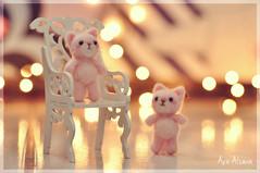 Love is pink <3 (Au Aizawa) Tags: needlefelting wool felt handmade mascot cat neko kitty bokeh