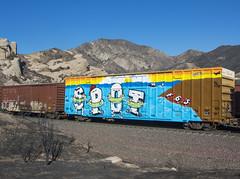 SPOT (TRUE 2 DEATH) Tags: spot fgs hnr wholecar cajonpass benching train freight boxcar graffiti graf railroad railfan railcar art railways freighttrain freighttraingraffiti trains spraypaint