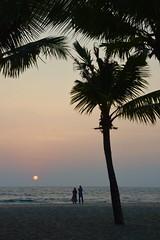 A Private Sunset (The Spirit of the World) Tags: beach couple sunset sun palm palmtree dusk evening night seascape arabiansea sea water quiet serene mood atmosphere southernindia kerala romantic