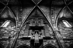 Bamberg, Germany (Javier Palacios Prieto) Tags: bamberg kirche orgel church archs architecture organ arcs arcos piedra stein stone
