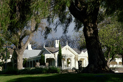 Grand Property in Geelong (gazrad) Tags: architecture building colour expensive fitzroyst geelong home horizontal luxury manor old one ornate outdoors outside realestate stately tree white