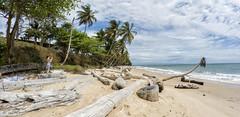 Gabon (sonisoon) Tags: africa gabon beach sun look like follow blue sand earth beautiful nice sea colors green tropique tropical mer ocan palms palmier beau chaleur heat travel bagpack lust somewhere