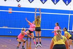 IMG_10378 (SJH Foto) Tags: girls volleyball high school lampeterstrasburg lampeter strasburg solanco team tween teen east teenager varsity net battle spike block action shot jump midair