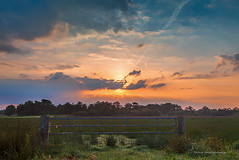 This morning when the light went on.... / Vanmorgen toen het licht aanging..... (Reina Smallenbroek) Tags: reinasmallenbroek landschap landscape polder fence hek netherlands leek onlanden leekstermeergebied sunrise zonsopkomst